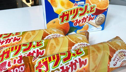 超濃厚!『ガツン、と濃いみかん』は、まるでミカンの缶詰を冷凍したようなアイス!QUOカードが当たるキャンペーンも