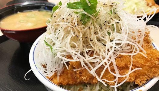 【濃厚塩だれ】「かつや」史上最大級のボリューム!『ガツ盛り野菜のチキンカツ』実食