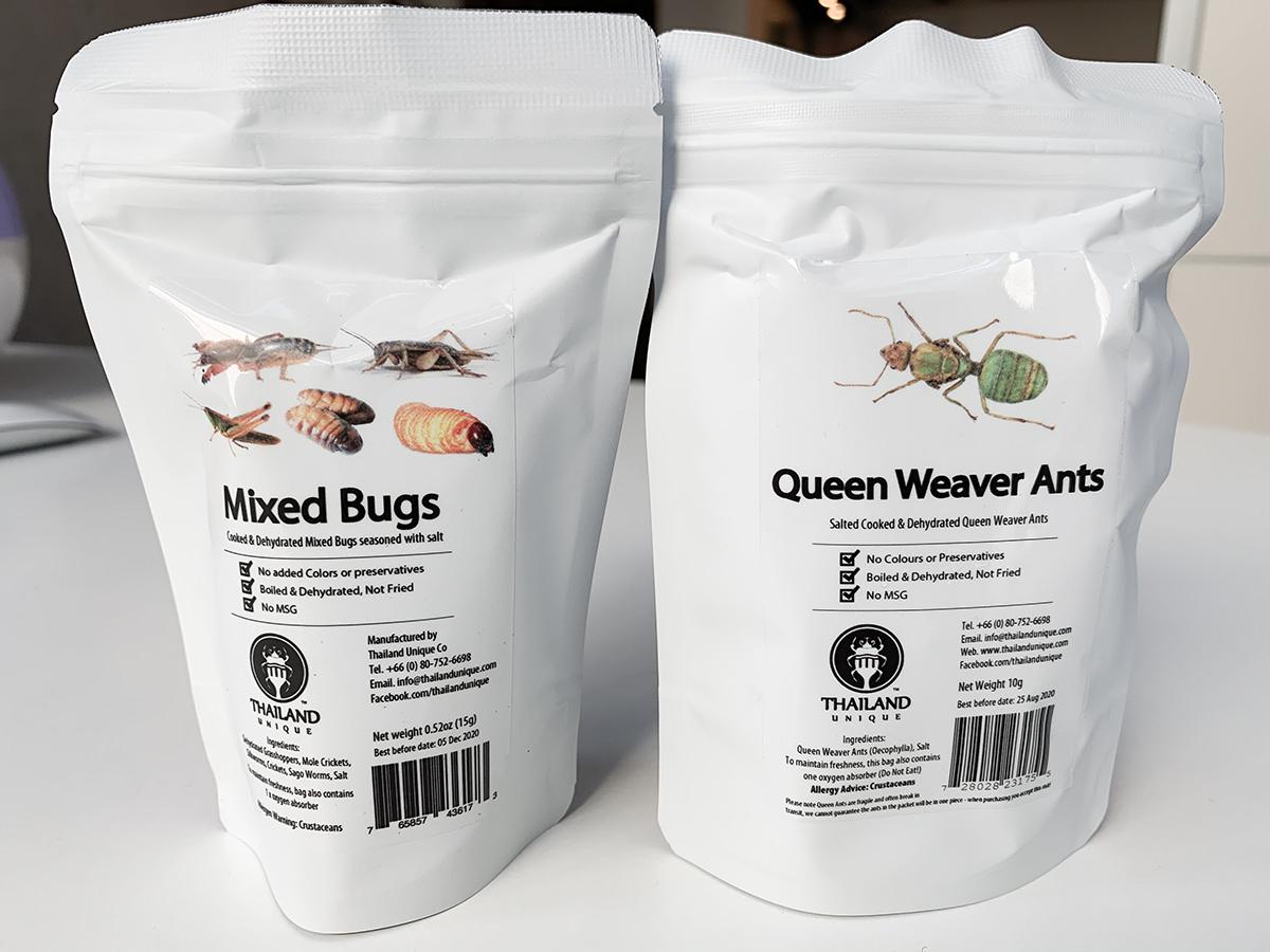 昆虫食2種